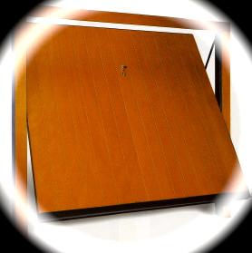 Porte Basculanti in legno non coibentati
